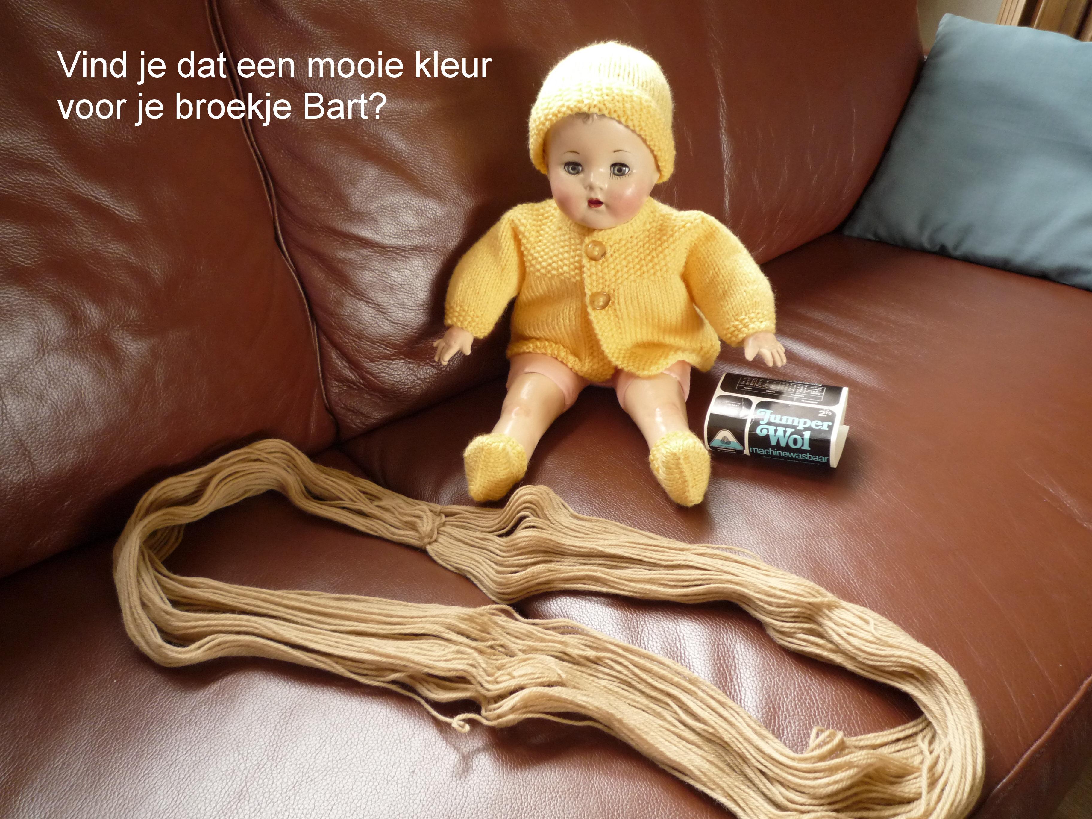 https://welkepopisdat.nl/afbeeldingen-Forum/DurvinaFotos/Bart%20en%20Daan%20(1).JPG