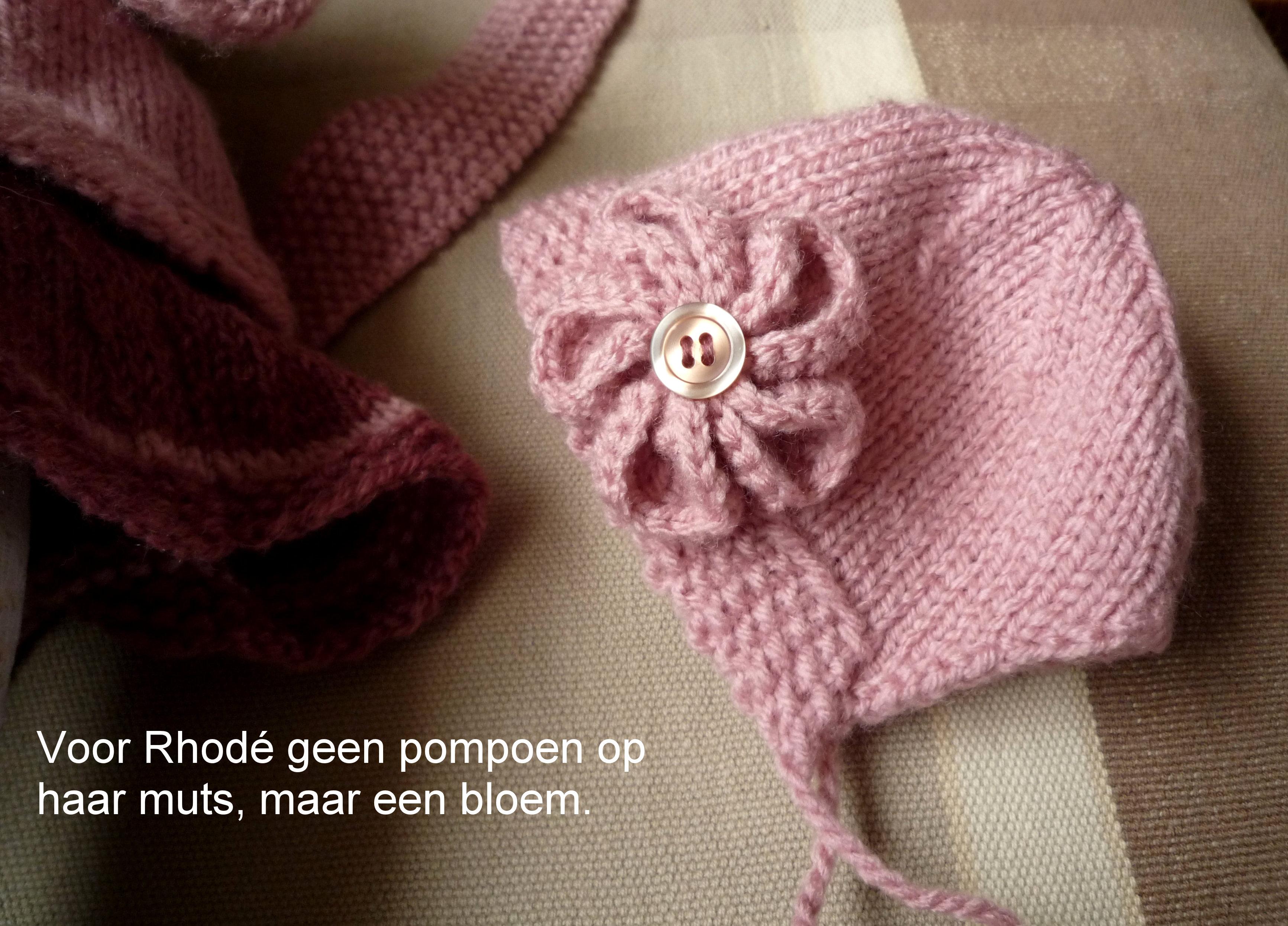 https://welkepopisdat.nl/afbeeldingen-Forum/DurvinaFotos/Bart,%20Daan%20en%20Rod%c3%a9%20(10).JPG