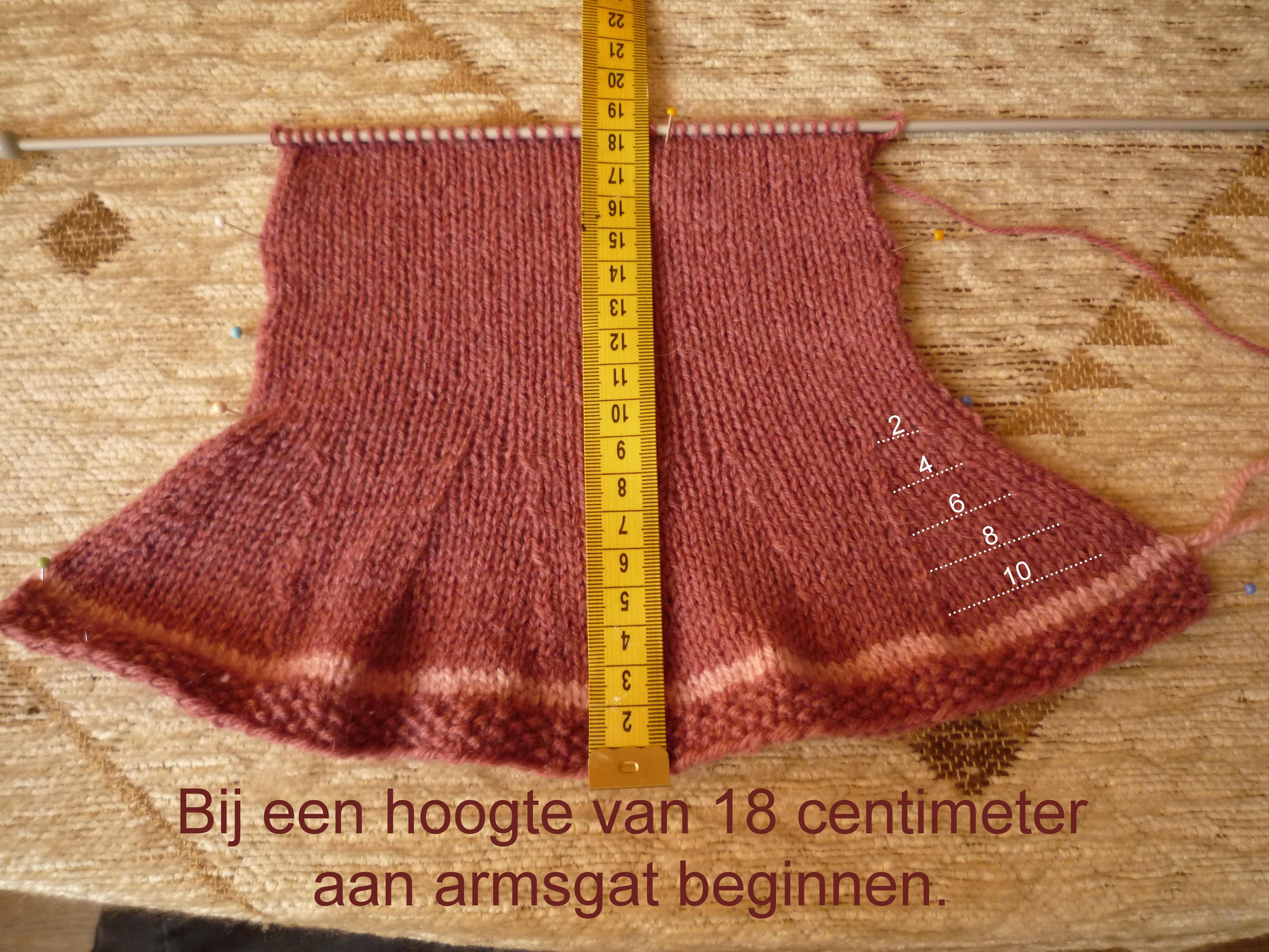 https://welkepopisdat.nl/afbeeldingen-Forum/DurvinaFotos/Bart,%20Daan%20en%20Rod%c3%a9%20(3).JPG