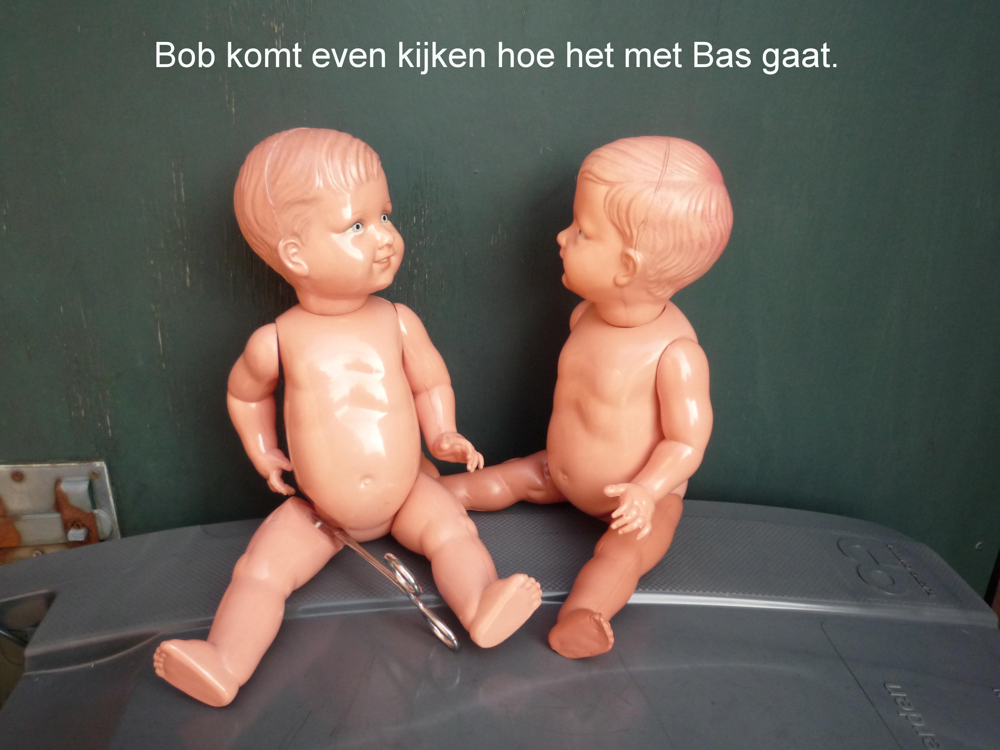 https://welkepopisdat.nl/afbeeldingen-Forum/DurvinaFotos/Bob%20en%20Bas%20(16).JPG