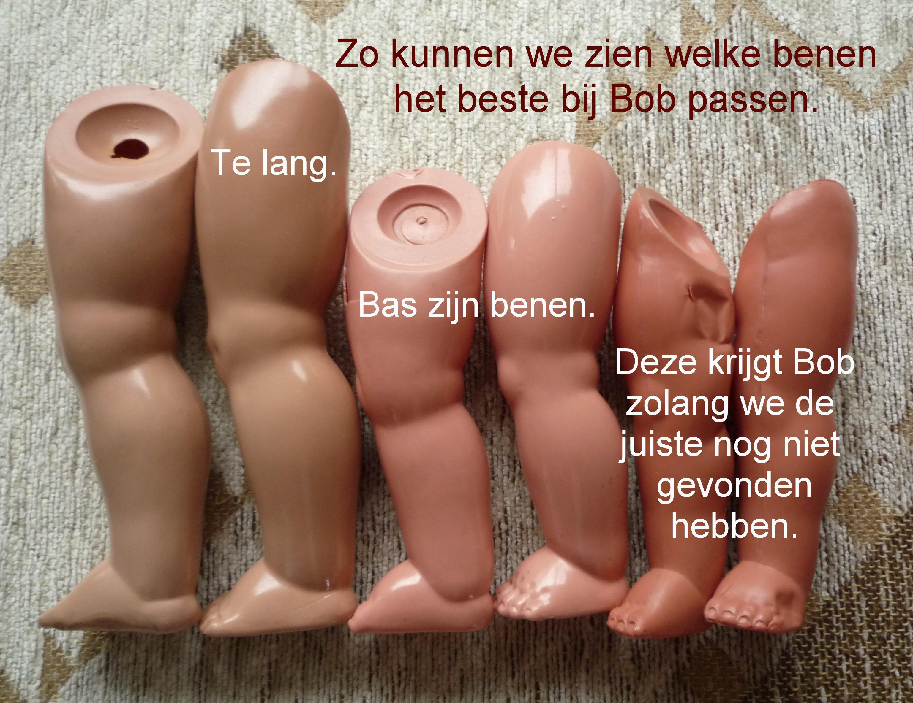 https://welkepopisdat.nl/afbeeldingen-Forum/DurvinaFotos/Bob%20en%20Bas%20(4).JPG