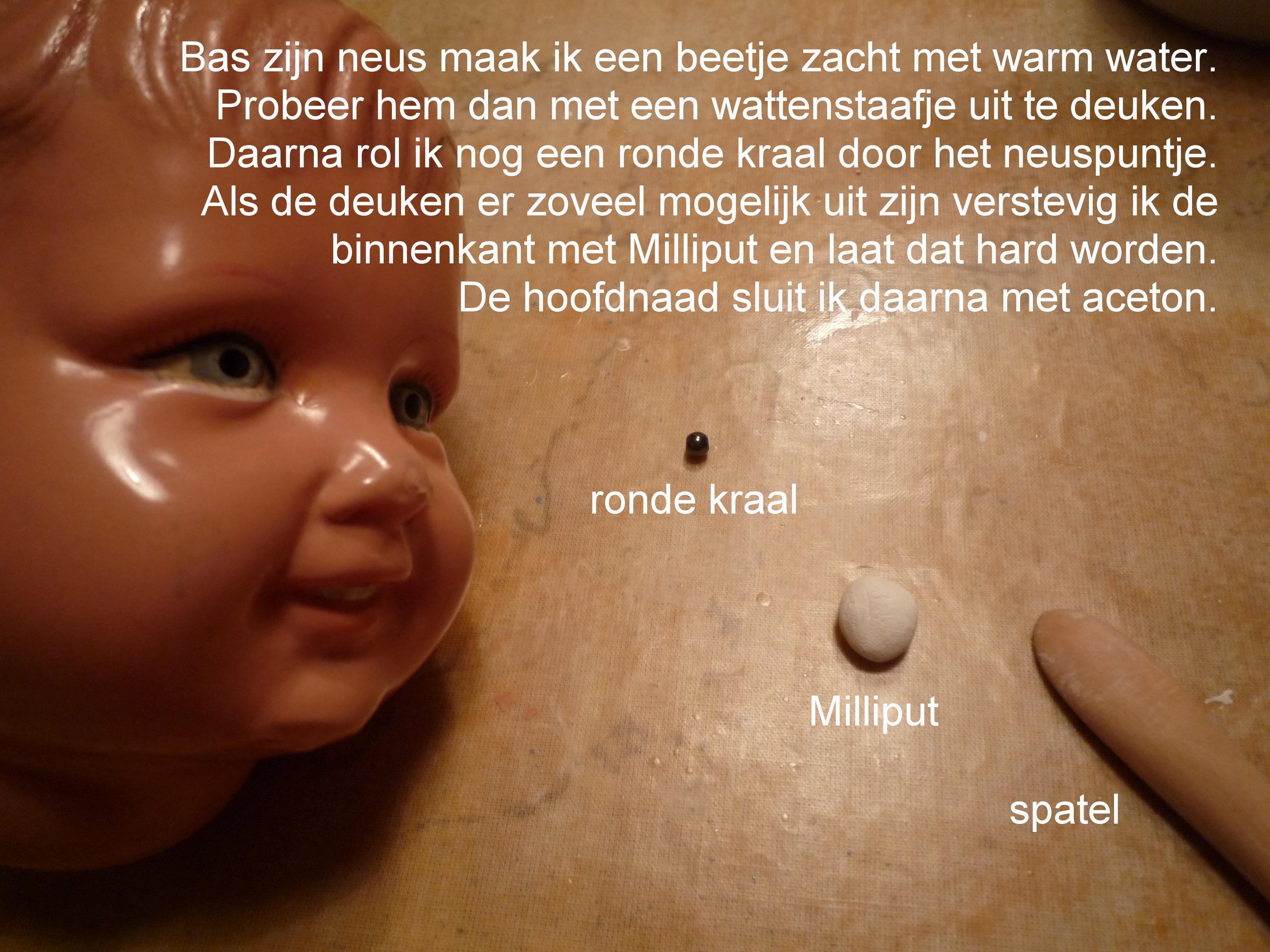 https://welkepopisdat.nl/afbeeldingen-Forum/DurvinaFotos/Bob%20en%20Bas%20(6).JPG