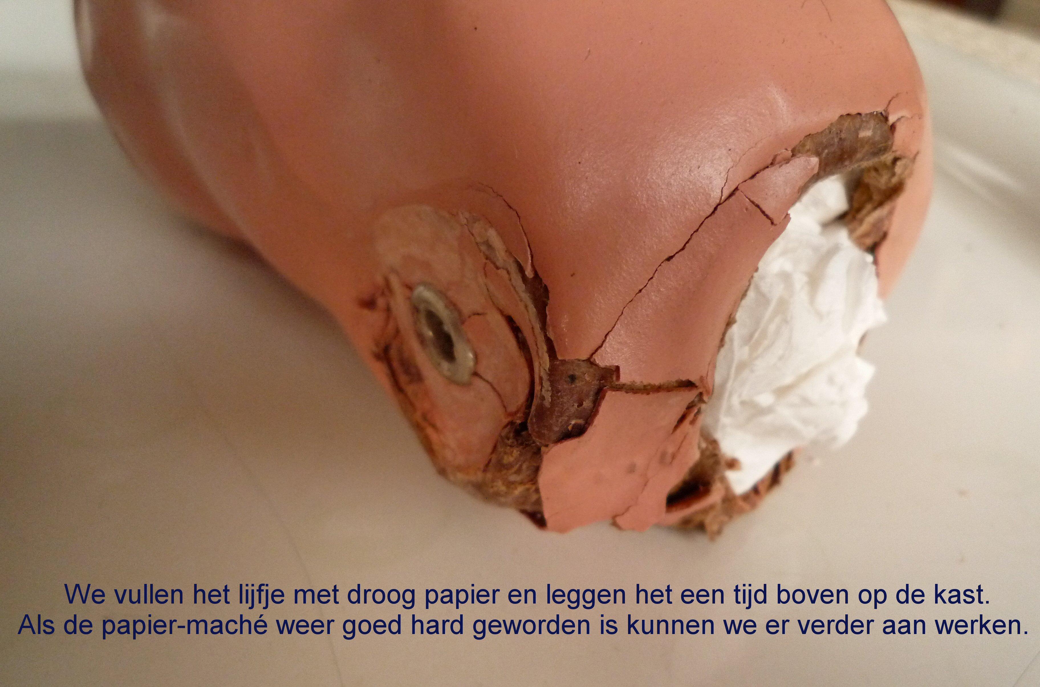 https://welkepopisdat.nl/afbeeldingen-Forum/DurvinaFotos/Bregje%20(10).JPG