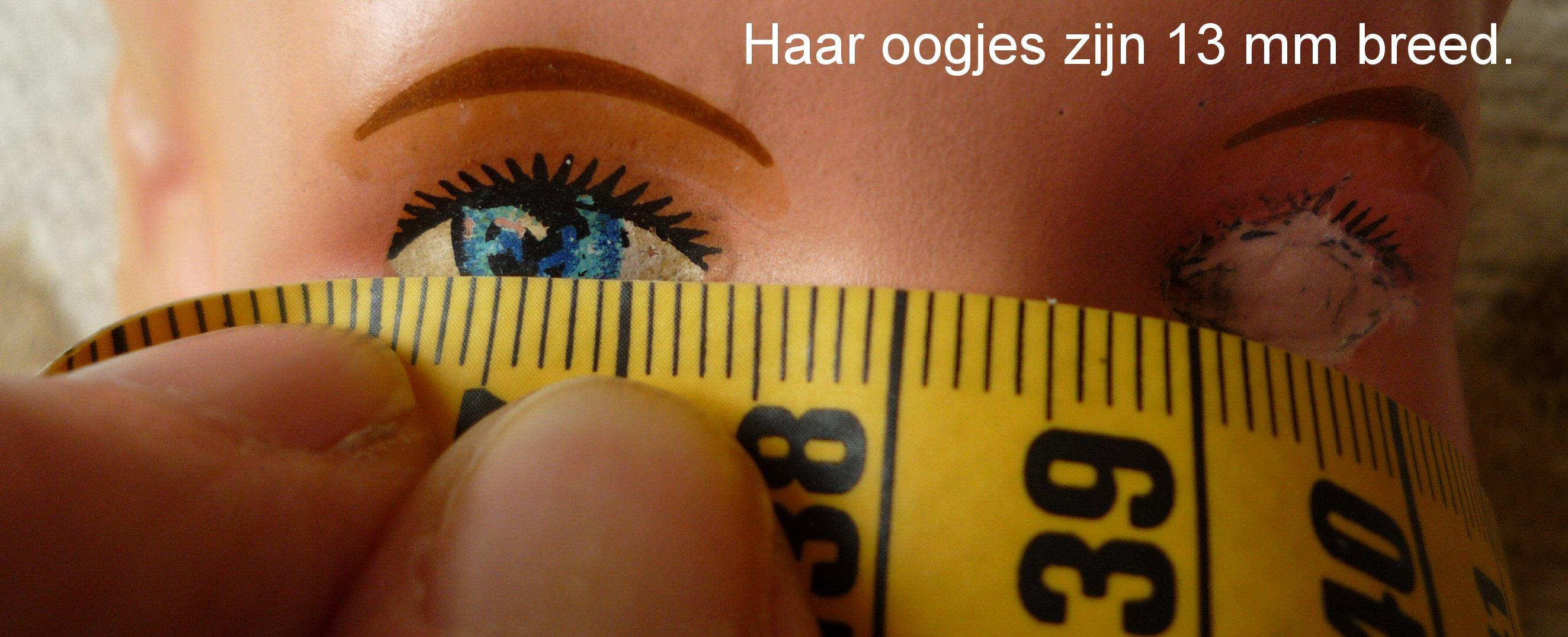 https://welkepopisdat.nl/afbeeldingen-Forum/DurvinaFotos/Bregje%20(12).JPG