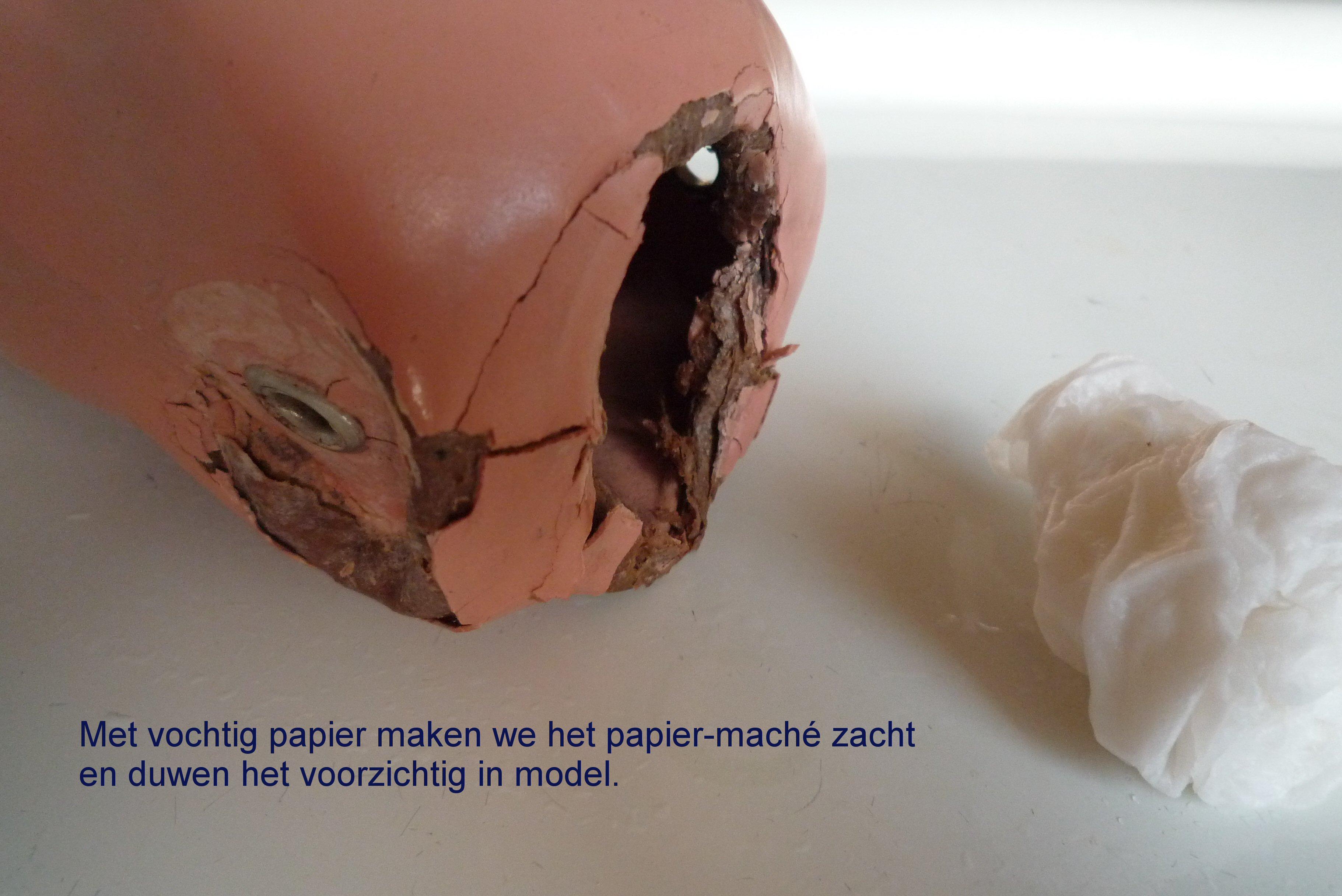 https://welkepopisdat.nl/afbeeldingen-Forum/DurvinaFotos/Bregje%20(9).JPG