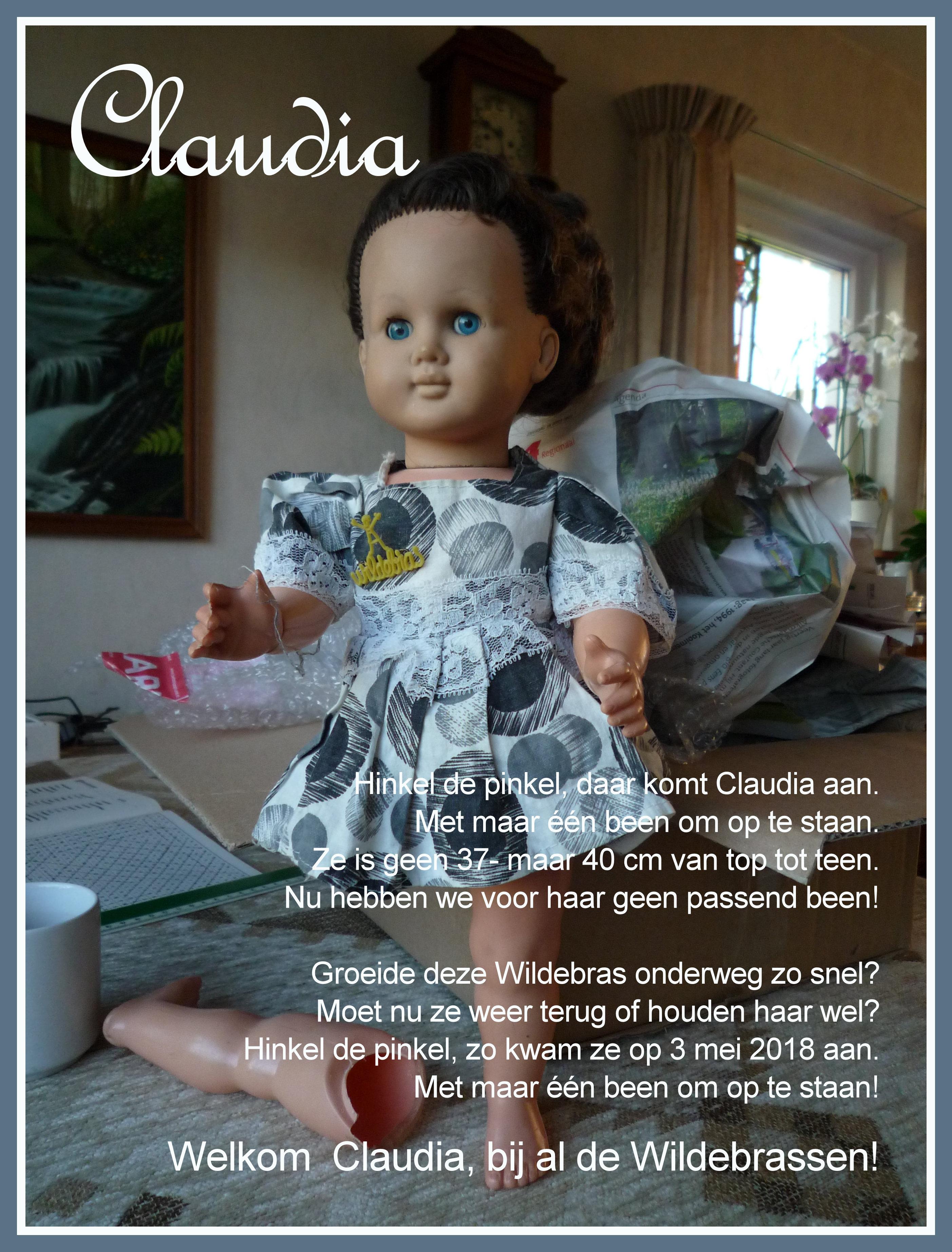 https://welkepopisdat.nl/afbeeldingen-Forum/DurvinaFotos/Claudia%20(1).JPG