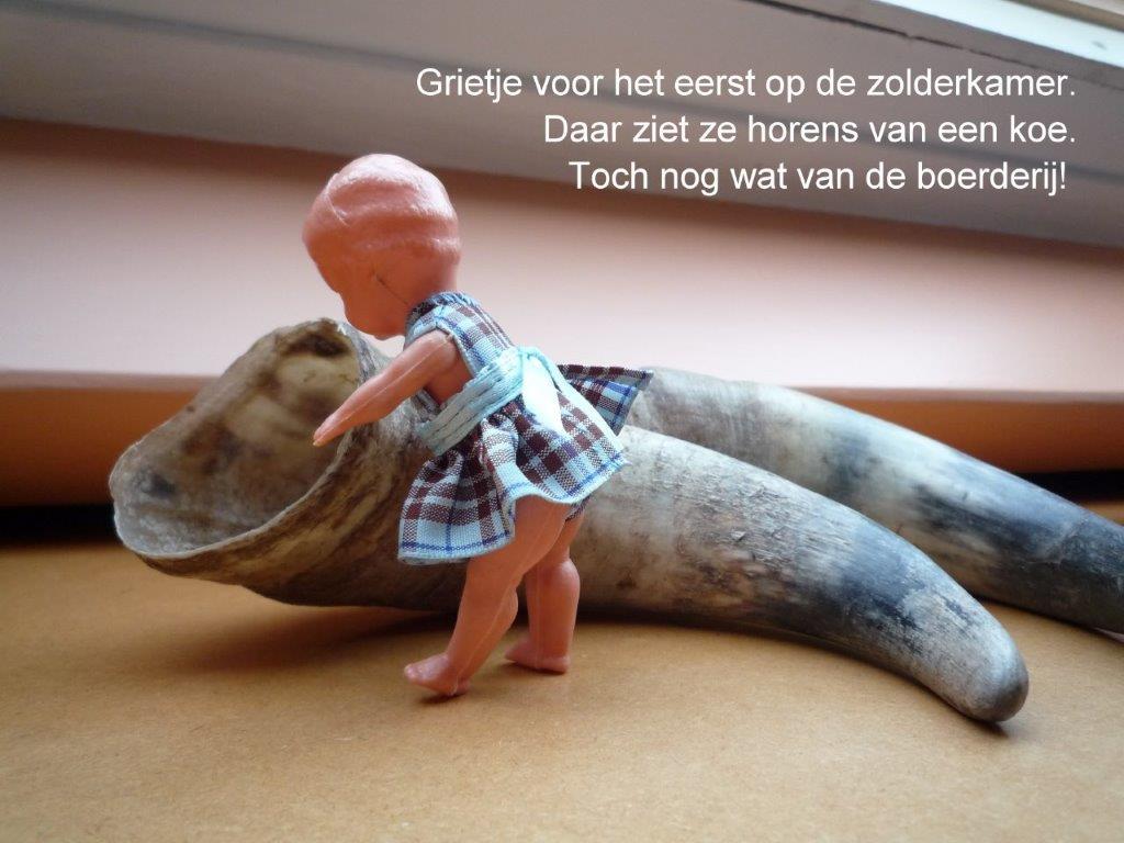 https://welkepopisdat.nl/afbeeldingen-Forum/DurvinaFotos/Grietje%20(2).jpg