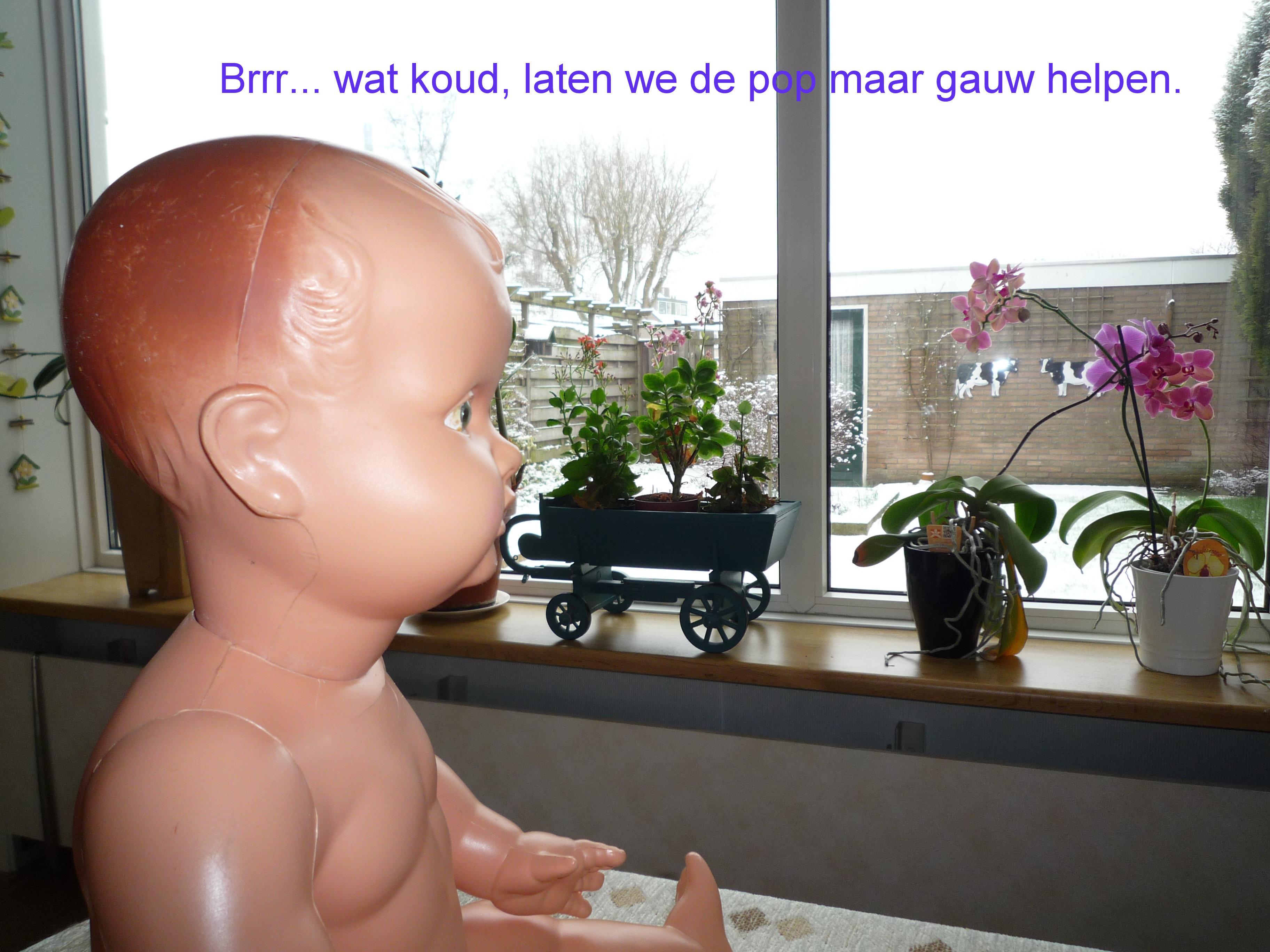 https://welkepopisdat.nl/afbeeldingen-Forum/DurvinaFotos/Heidi%20(12).JPG
