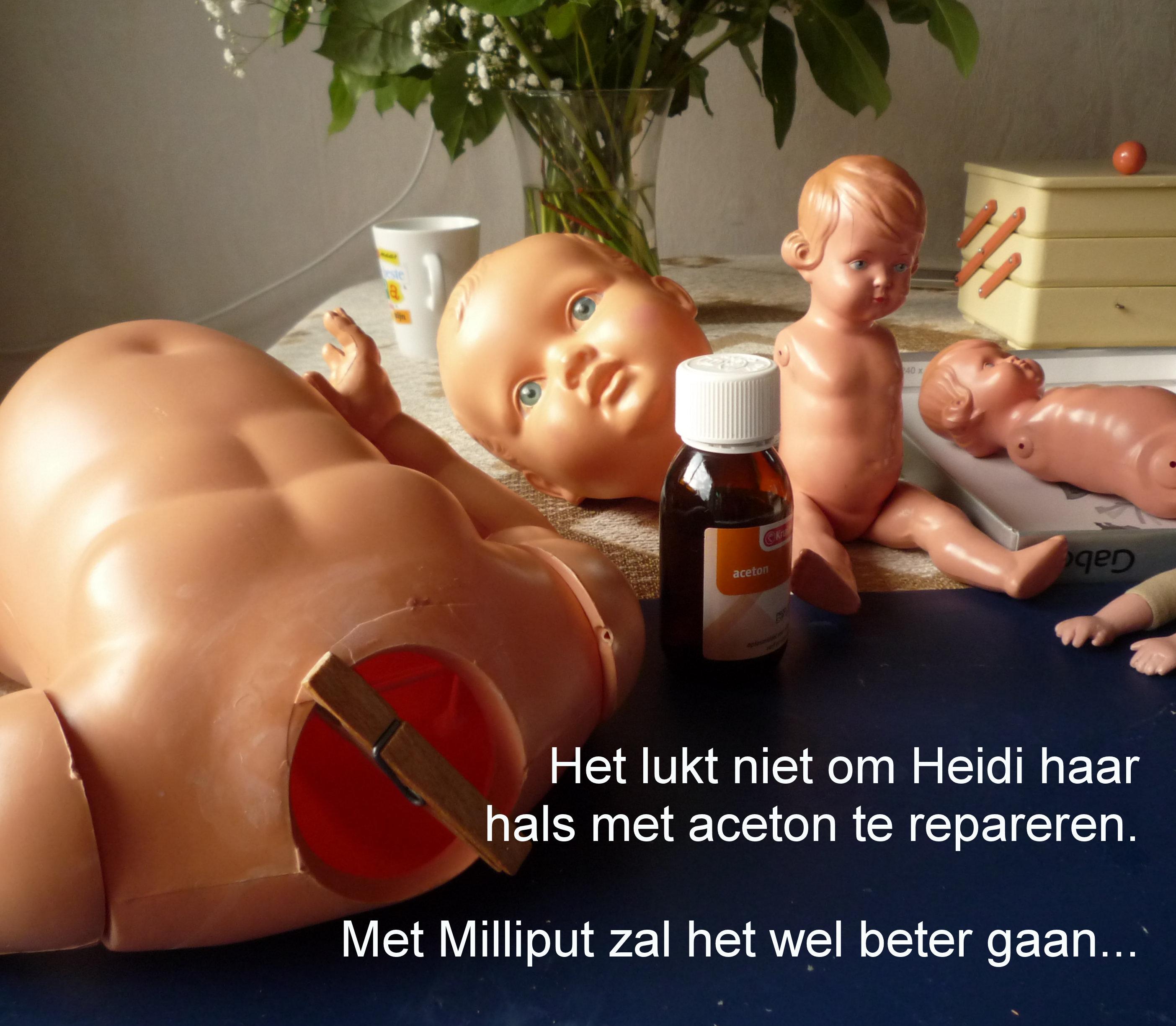 https://welkepopisdat.nl/afbeeldingen-Forum/DurvinaFotos/Heidi%20(13).JPG