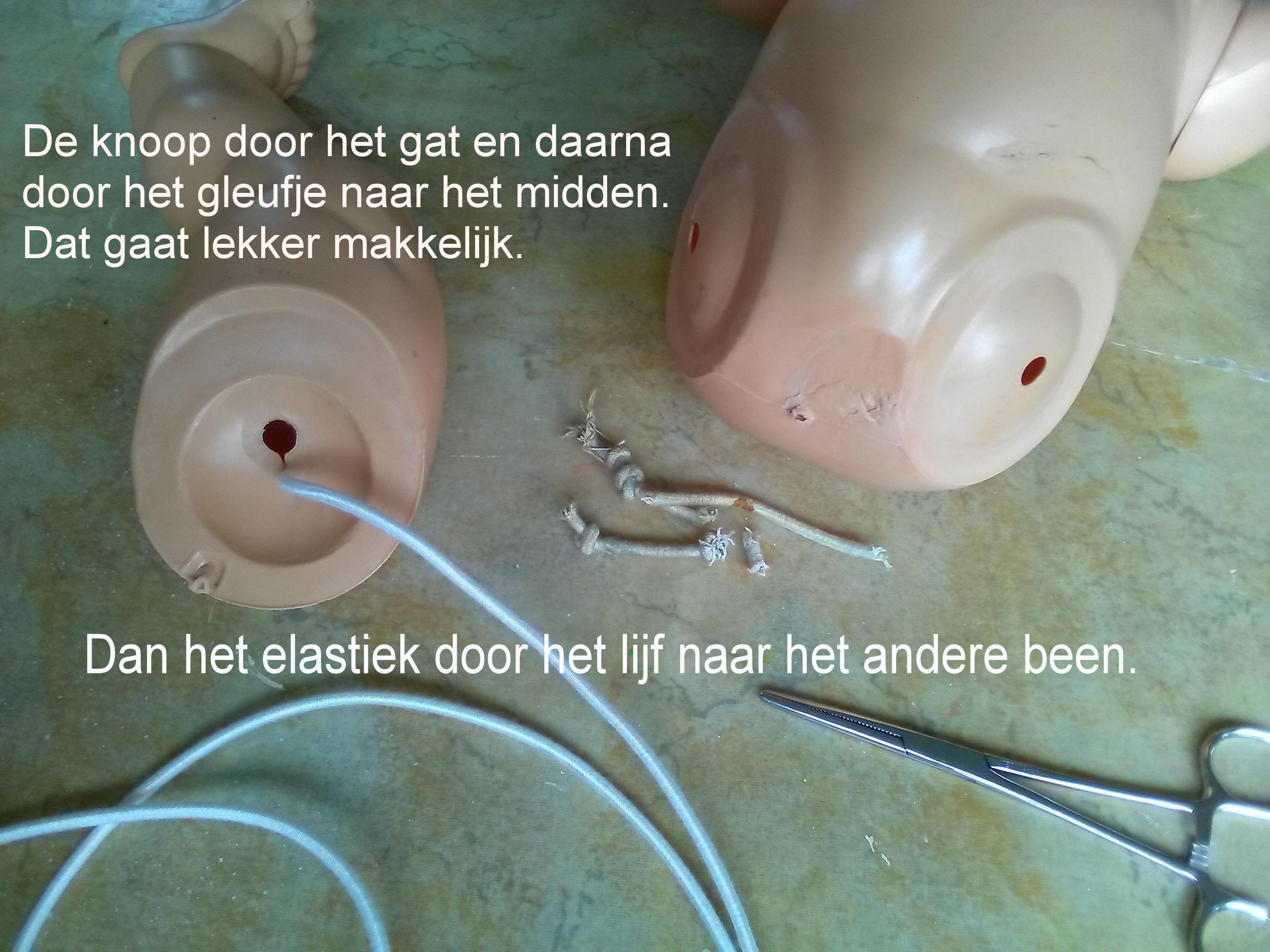 https://welkepopisdat.nl/afbeeldingen-Forum/DurvinaFotos/Heidi%20(21).jpg