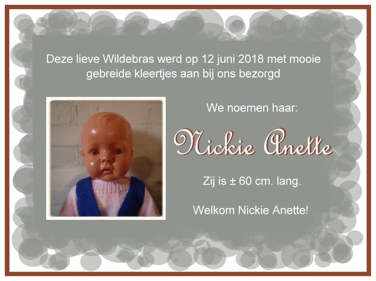 https://welkepopisdat.nl/afbeeldingen-Forum/DurvinaFotos/Kaartje%20Nickie%20Anette%20.jpg