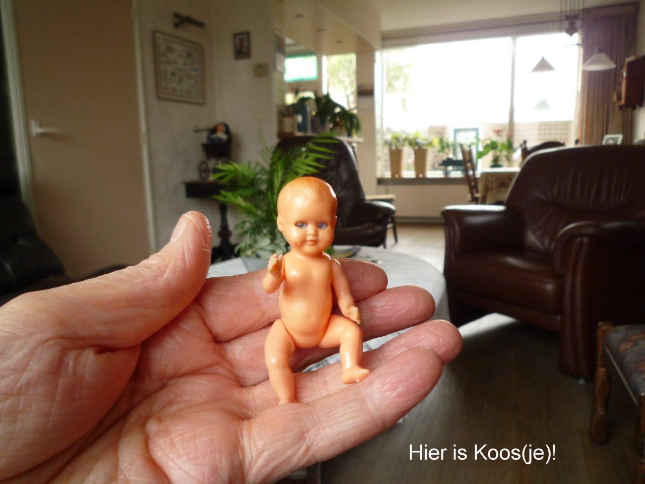 https://welkepopisdat.nl/afbeeldingen-Forum/DurvinaFotos/Koos%20(1).jpg