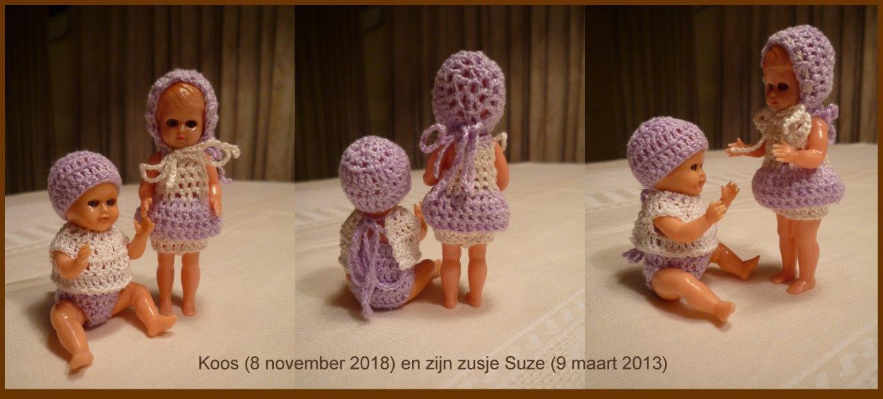 https://welkepopisdat.nl/afbeeldingen-Forum/DurvinaFotos/Koos%20(7).jpg