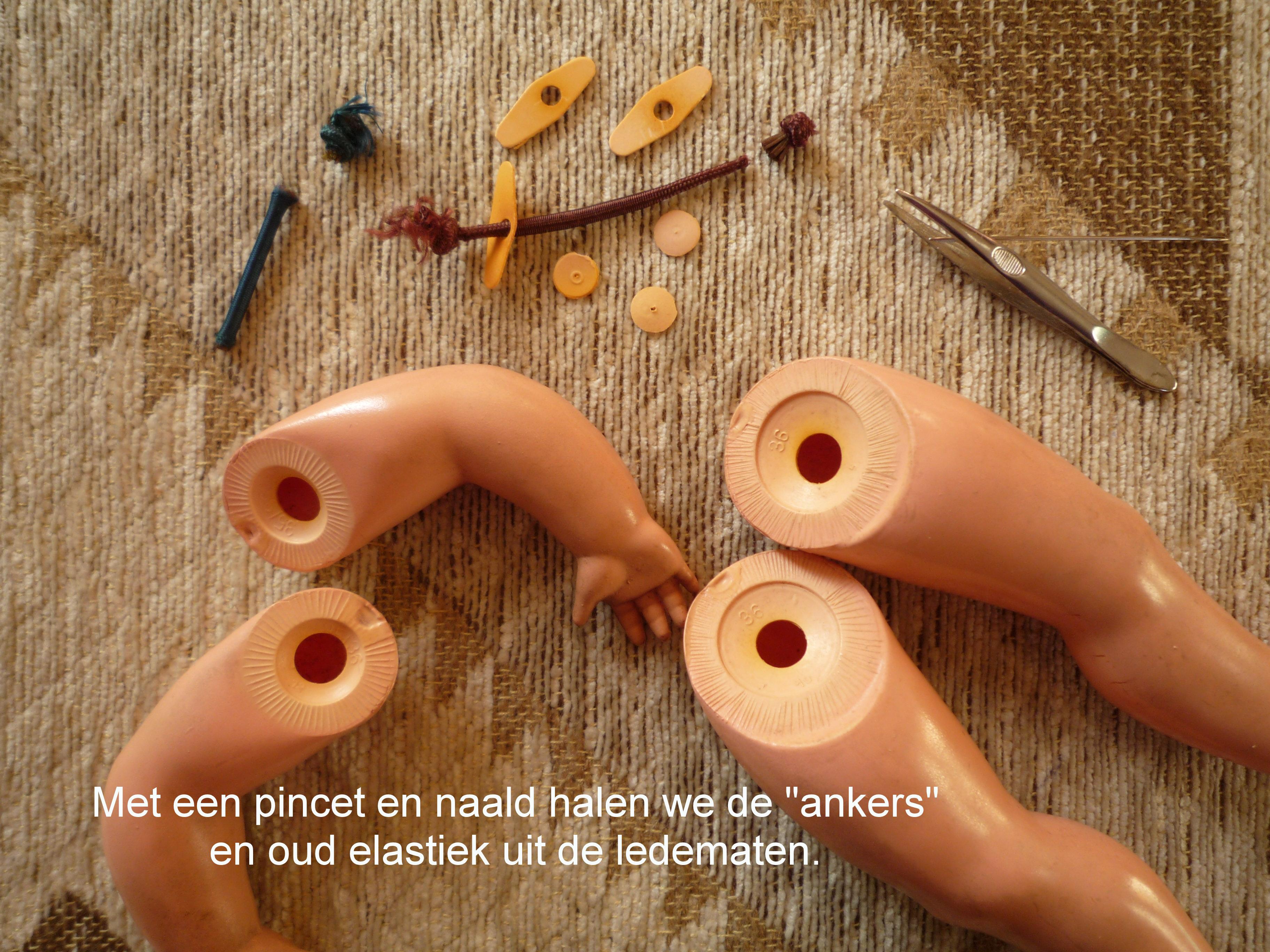 https://welkepopisdat.nl/afbeeldingen-Forum/DurvinaFotos/Mila%20(3).JPG