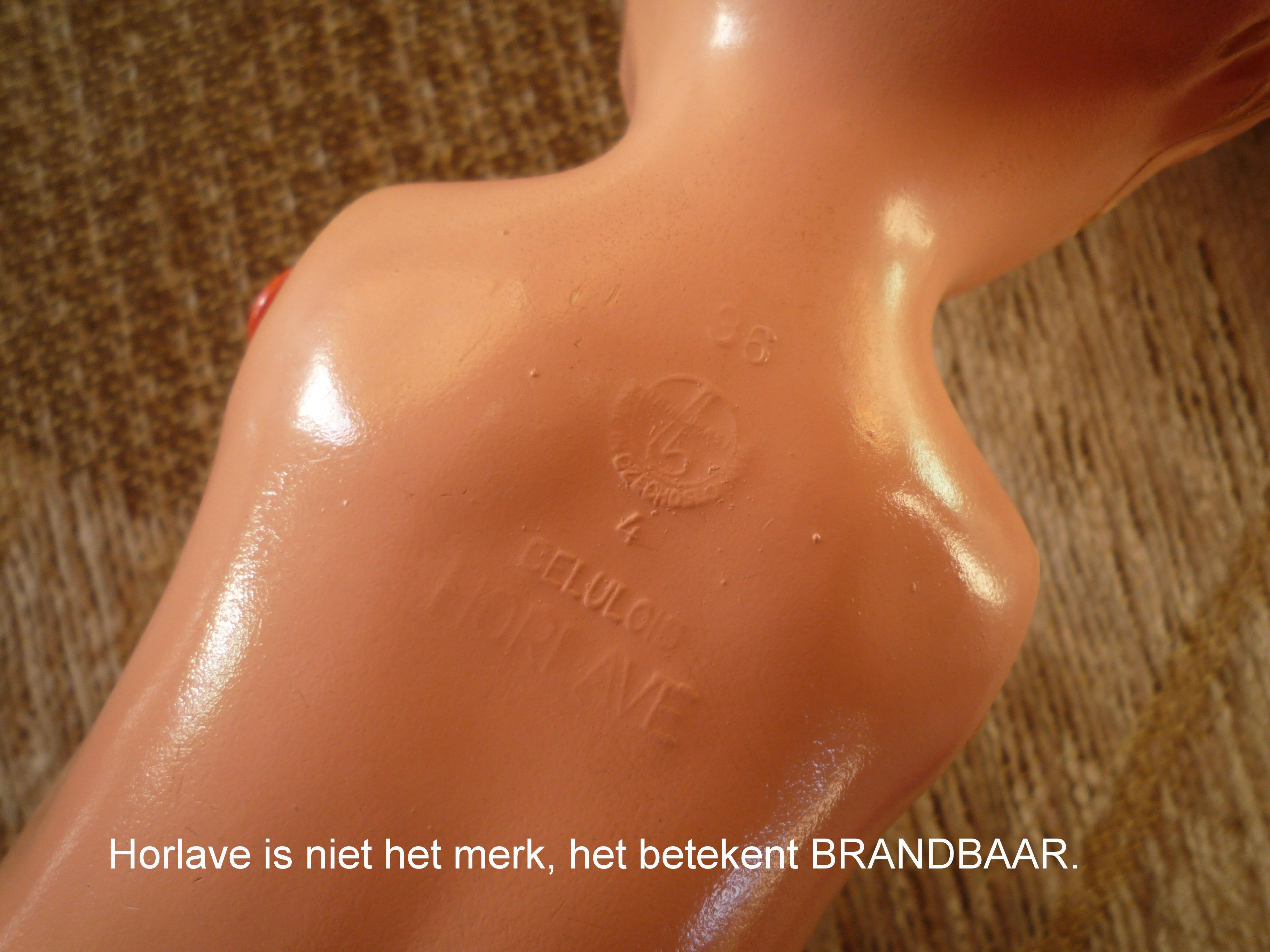 https://welkepopisdat.nl/afbeeldingen-Forum/DurvinaFotos/Mila%20(5).JPG