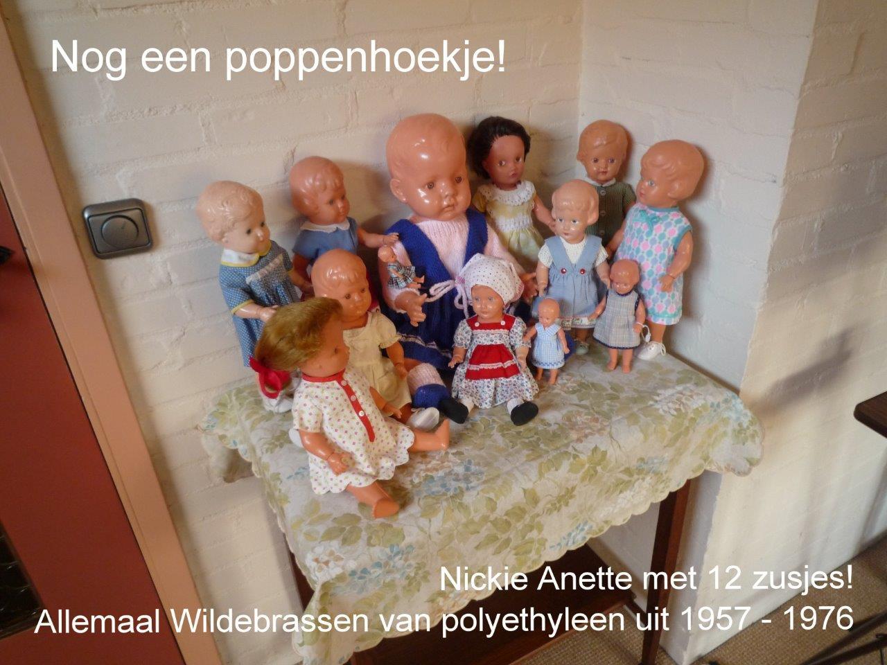 https://welkepopisdat.nl/afbeeldingen-Forum/DurvinaFotos/Nickie%20Anette%20(2).jpg