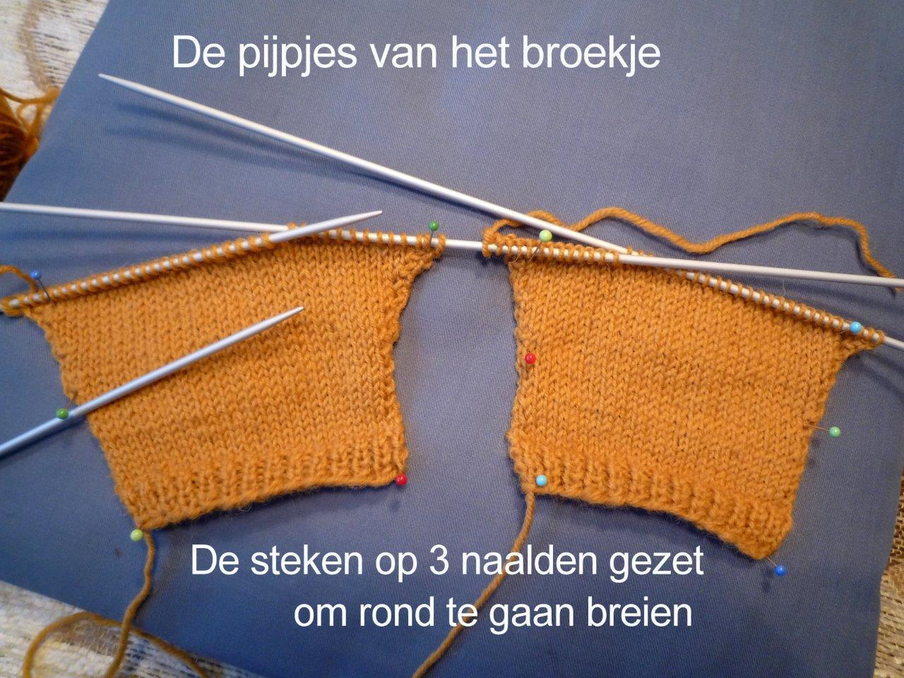 https://welkepopisdat.nl/afbeeldingen-Forum/DurvinaFotos/W%20(2).jpg