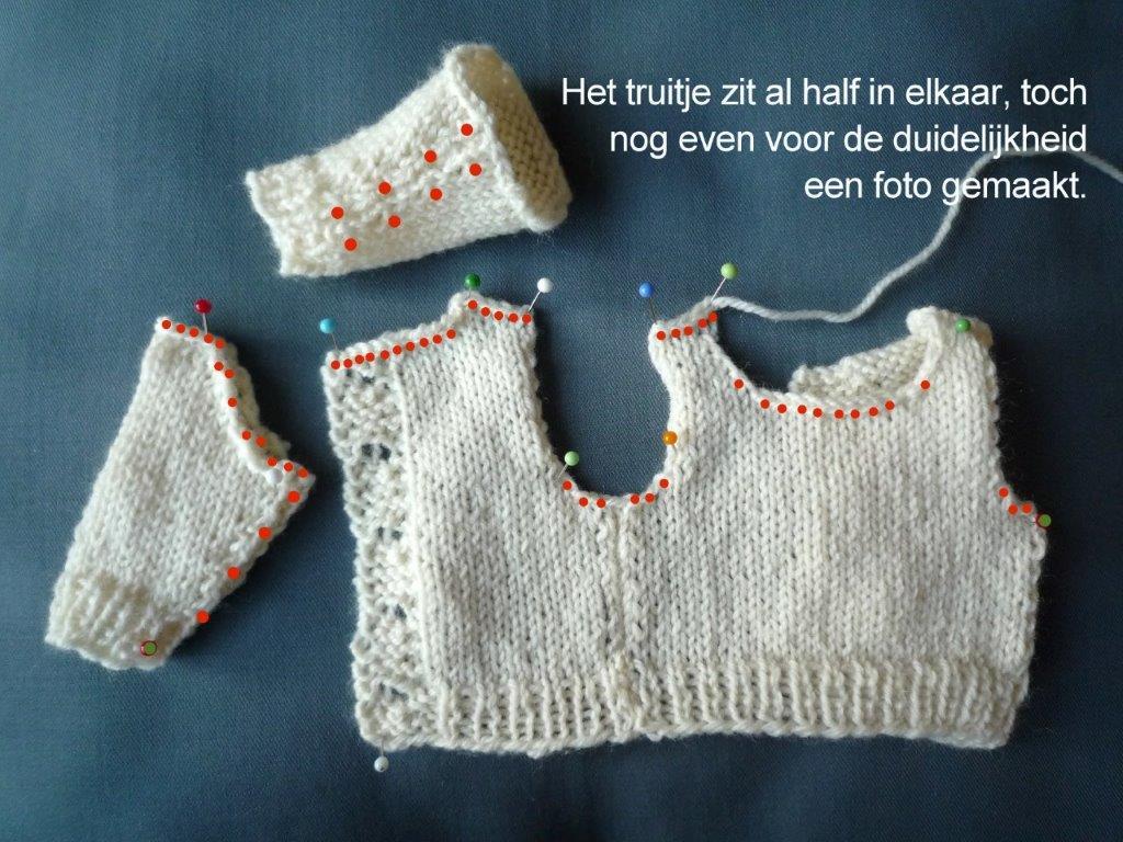 https://welkepopisdat.nl/afbeeldingen-Forum/DurvinaFotos/W%20(5).jpg