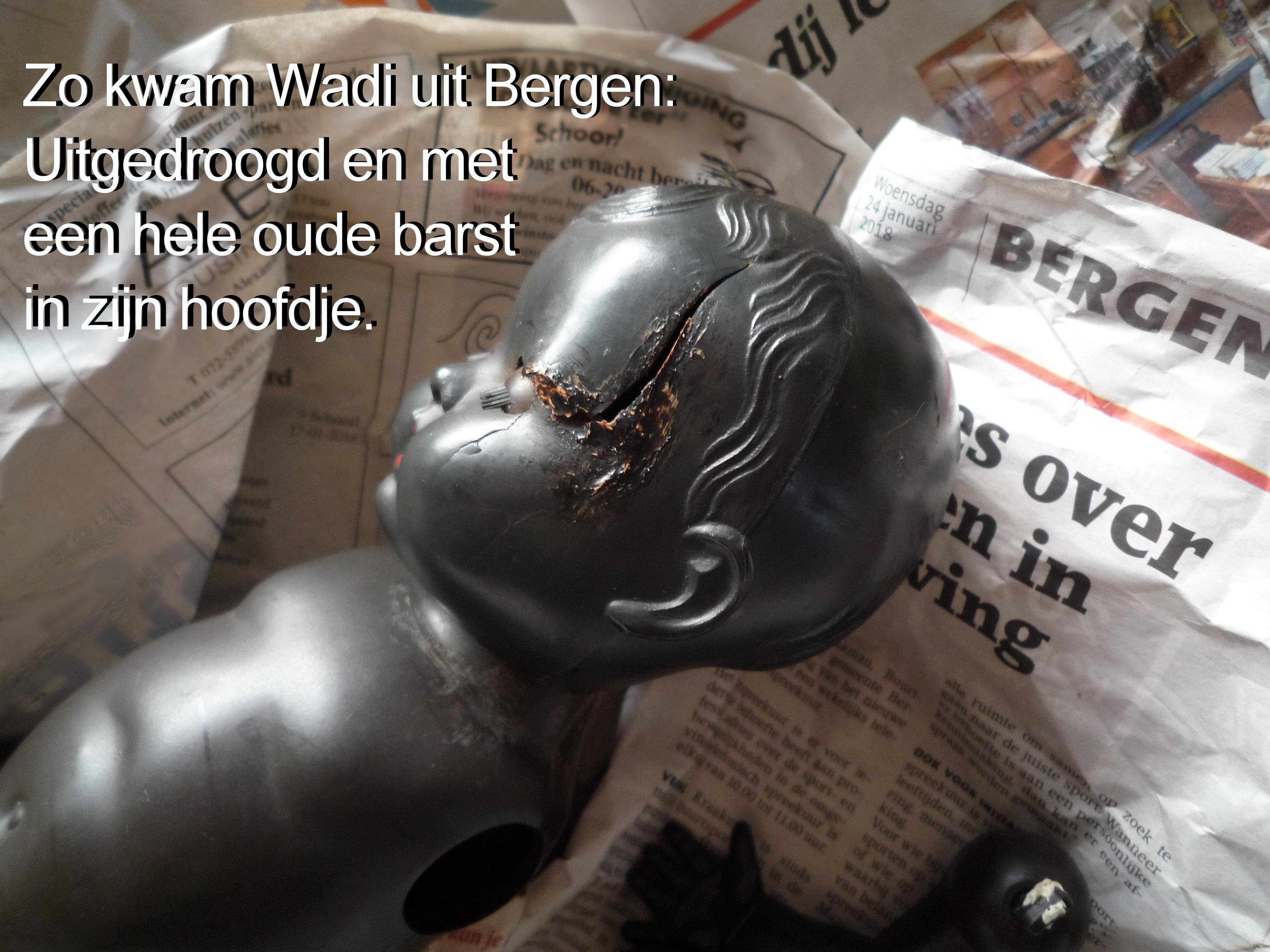 https://welkepopisdat.nl/afbeeldingen-Forum/DurvinaFotos/rep.%20W%20(1).JPG